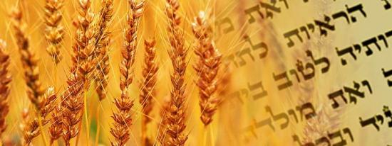 Yaakov Dov Bleich congratulated the Jewish community on the Holiday of Shavuot